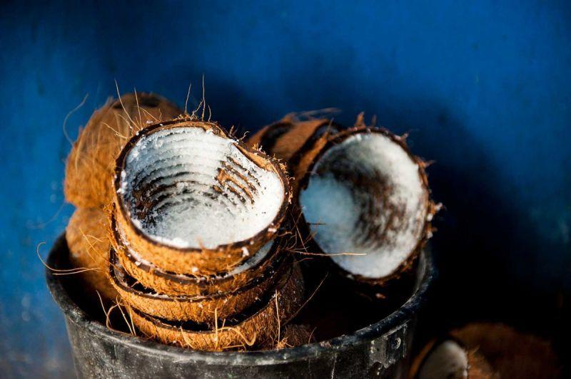 TallulahPhoto-BelizeCayecaulker-5898