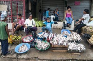 TallulahPhoto-ColombiaAmazon5933.jpg