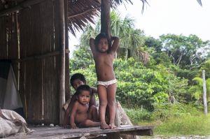 TallulahPhoto-ColombiaAmazon6131.jpg