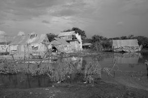 HaitiR225.jpg